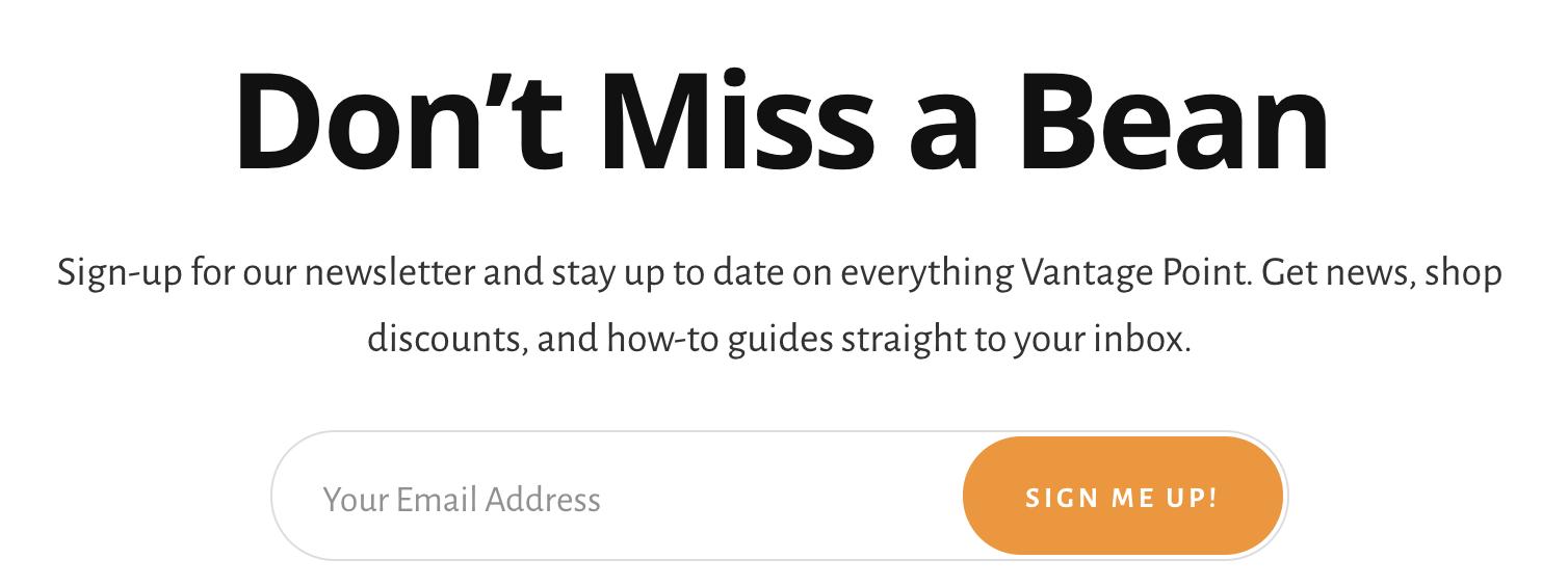 Marketing writer work on Vantage point Newsletter plug.